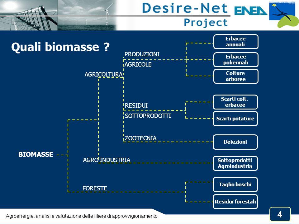 Quali biomasse BIOMASSE PRODUZIONI AGRICOLE AGRICOLTURA RESIDUI