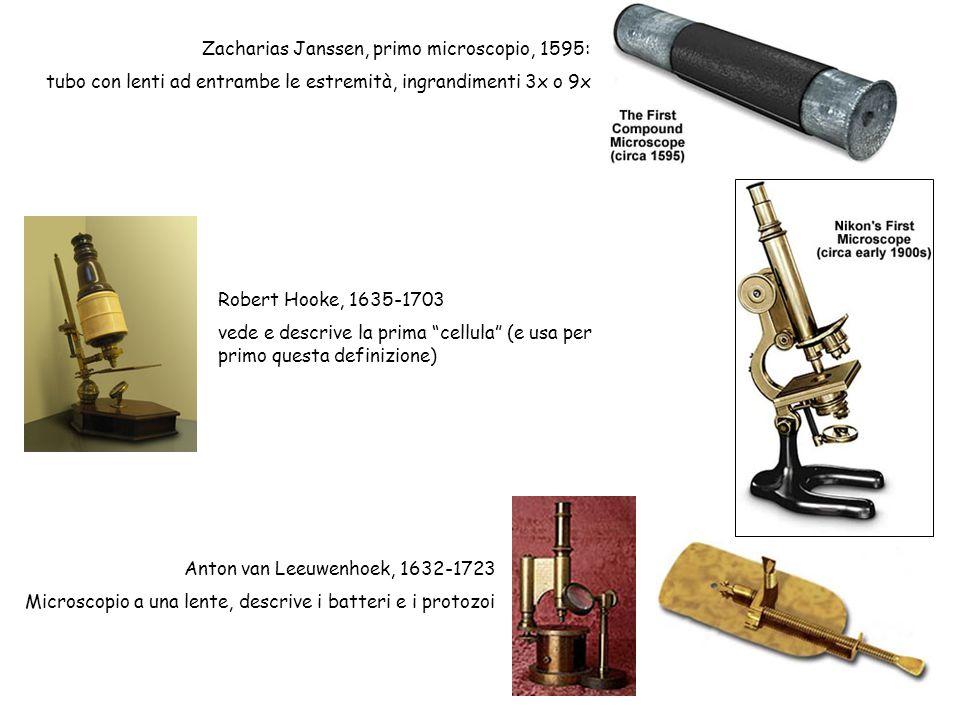 Zacharias Janssen, primo microscopio, 1595: