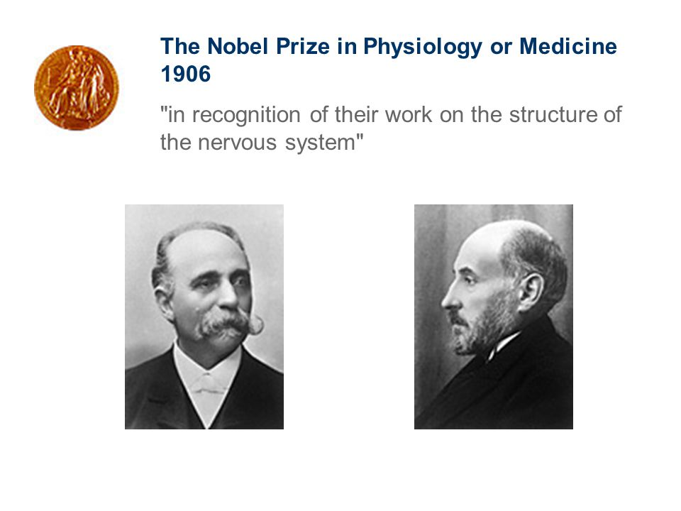 The Nobel Prize in Physiology or Medicine 1906