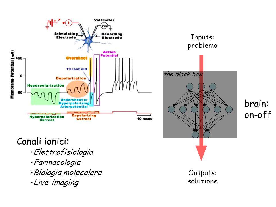 brain: on-off Canali ionici: Elettrofisiologia Farmacologia