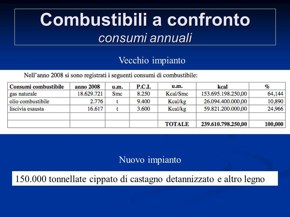 Combustibili a confronto consumi annuali