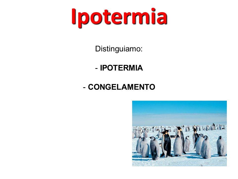 Ipotermia Distinguiamo: IPOTERMIA CONGELAMENTO 55