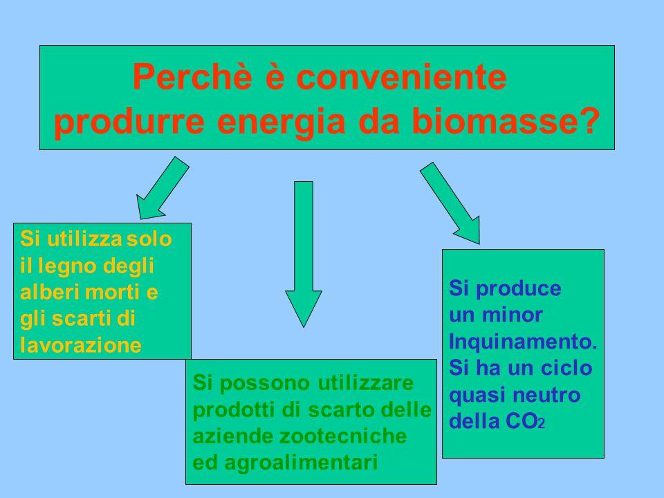 produrre energia da biomasse