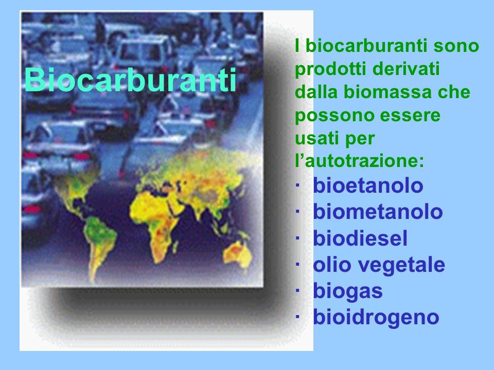 Biocarburanti · bioetanolo · biometanolo · biodiesel · olio vegetale