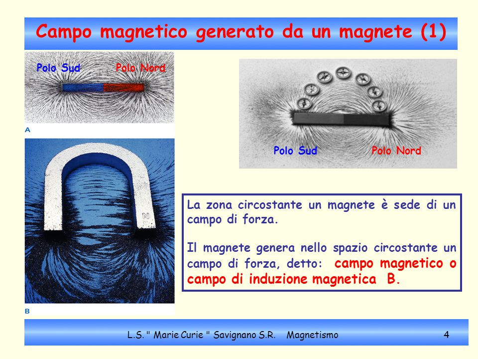Campo magnetico generato da un magnete (1)