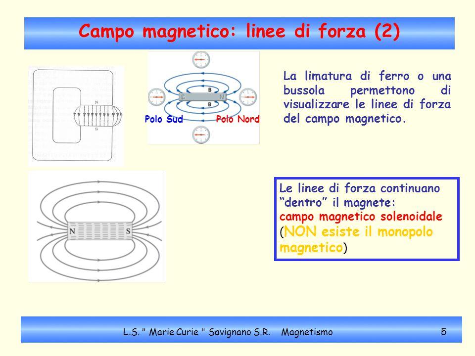 Campo magnetico: linee di forza (2)