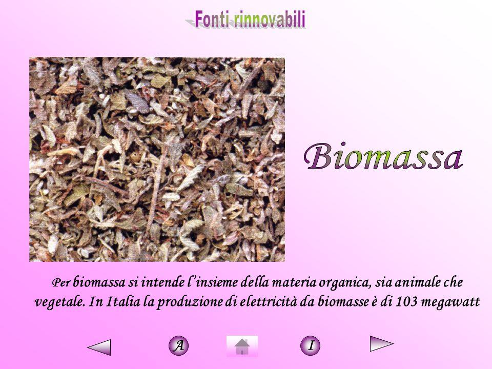 Fonti rinnovabili Biomassa.