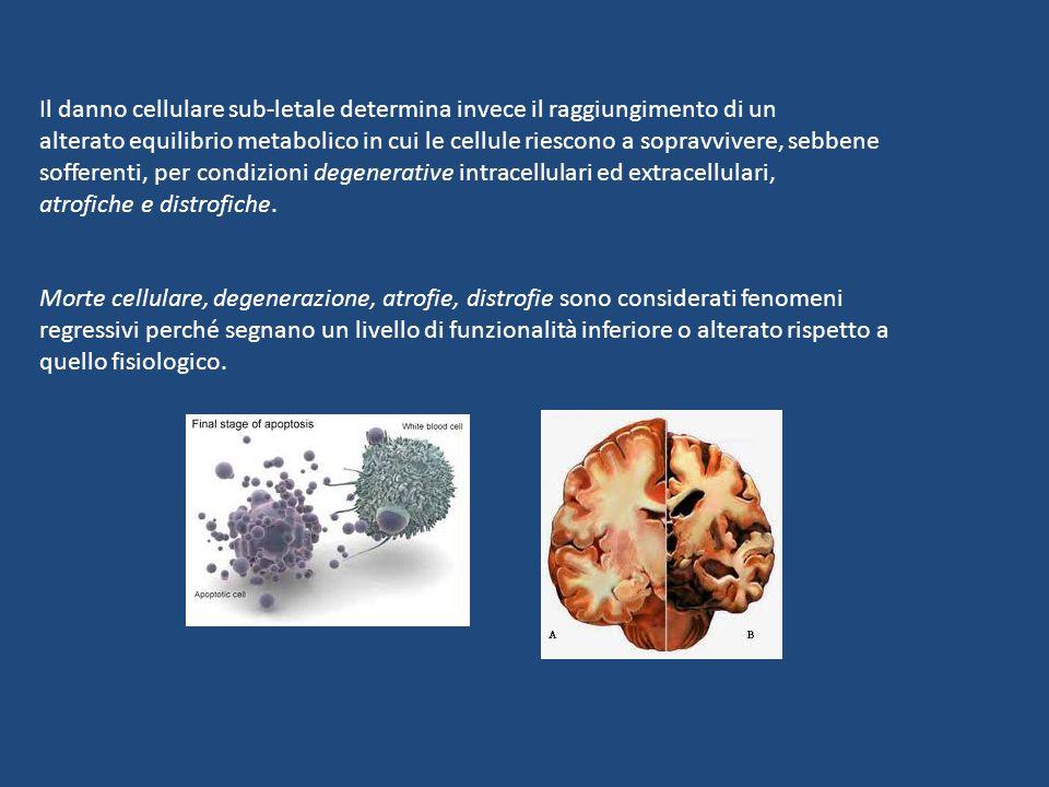 Il danno cellulare sub-letale determina invece il raggiungimento di un