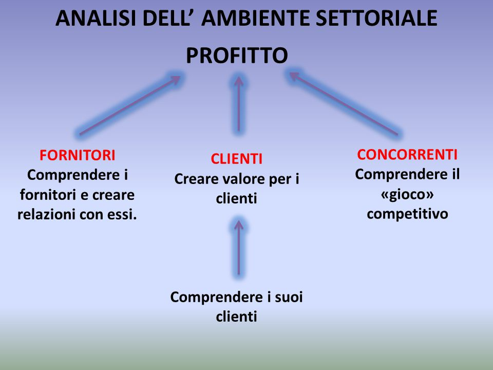 ANALISI DELL' AMBIENTE SETTORIALE PROFITTO