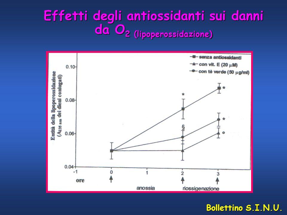 Effetti degli antiossidanti sui danni da O2 (lipoperossidazione)