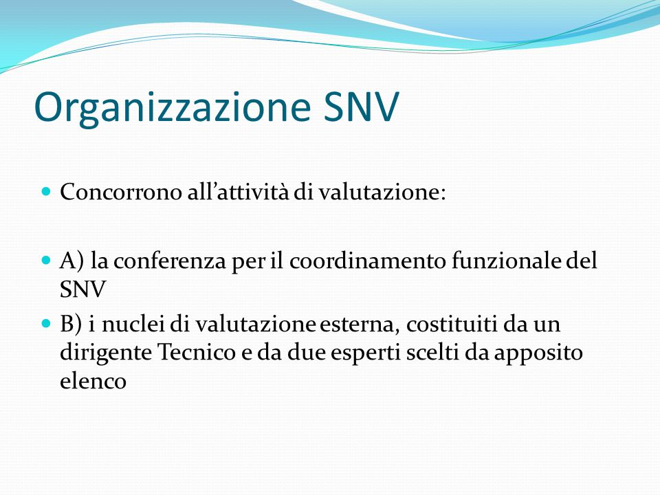 Organizzazione SNV Concorrono all'attività di valutazione: