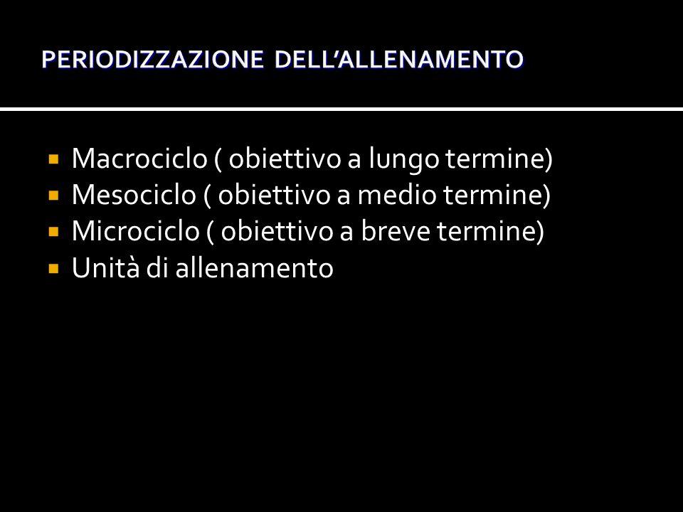 PERIODIZZAZIONE DELL'ALLENAMENTO