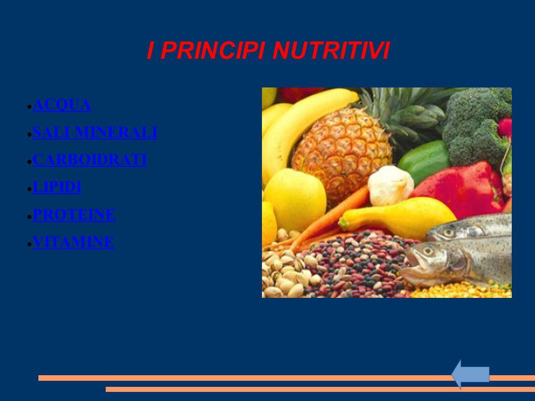 I PRINCIPI NUTRITIVI ACQUA SALI MINERALI CARBOIDRATI LIPIDI PROTEINE