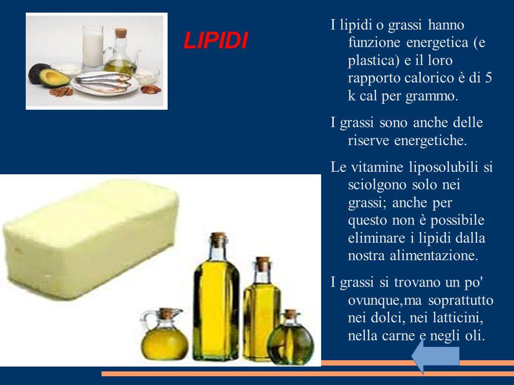 LIPIDI I lipidi o grassi hanno funzione energetica (e plastica) e il loro rapporto calorico è di 5 k cal per grammo.