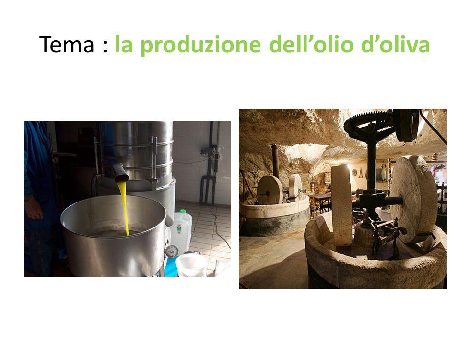 Tema : la produzione dell'olio d'oliva