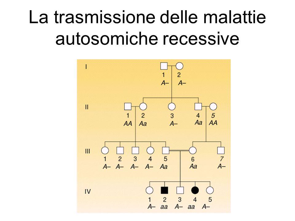 La trasmissione delle malattie autosomiche recessive