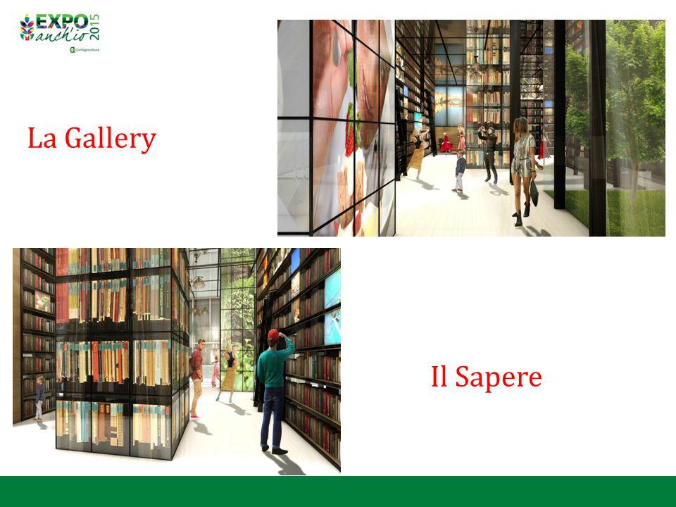 La Gallery Il Sapere