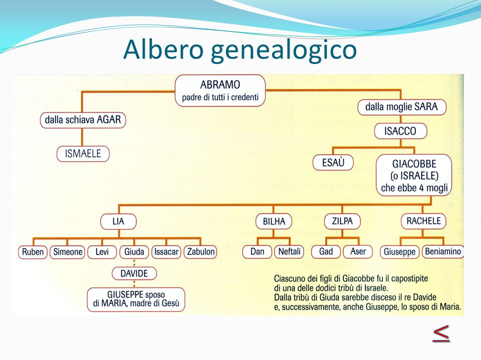 Albero genealogico <