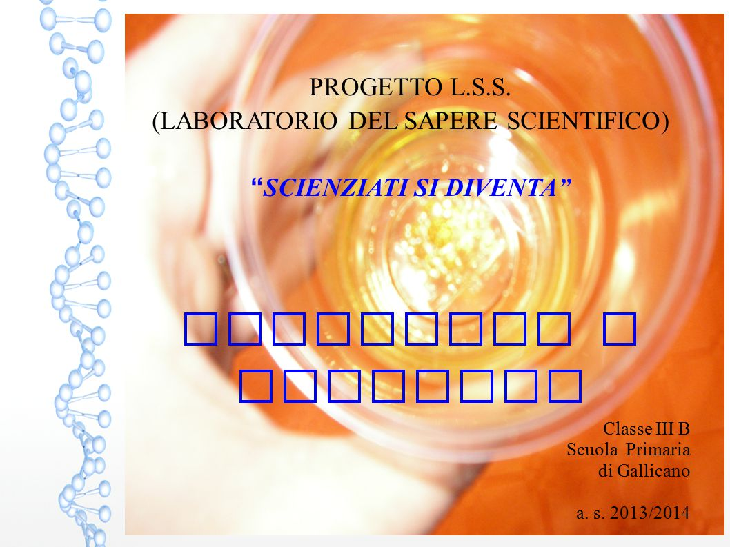 Classe III B Scuola Primaria di Gallicano a. s. 2013/2014