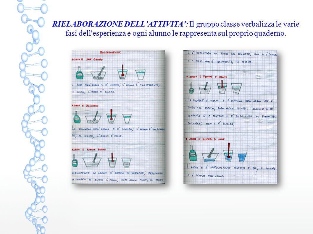 RIELABORAZIONE DELL ATTIVITA : Il gruppo classe verbalizza le varie fasi dell esperienza e ogni alunno le rappresenta sul proprio quaderno.
