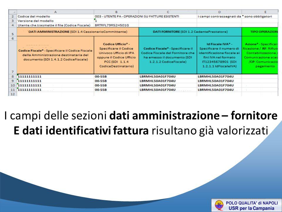 I campi delle sezioni dati amministrazione – fornitore