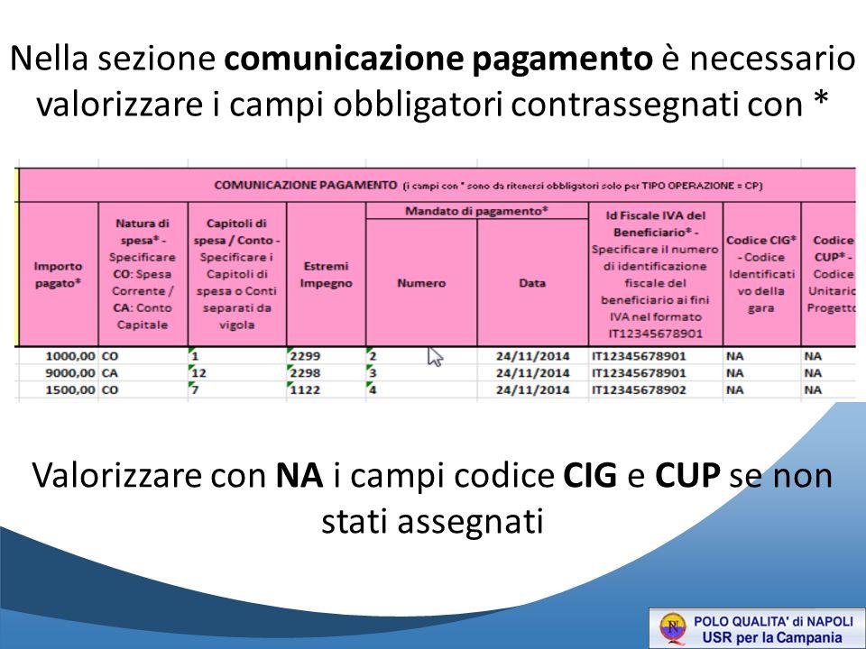Valorizzare con NA i campi codice CIG e CUP se non stati assegnati