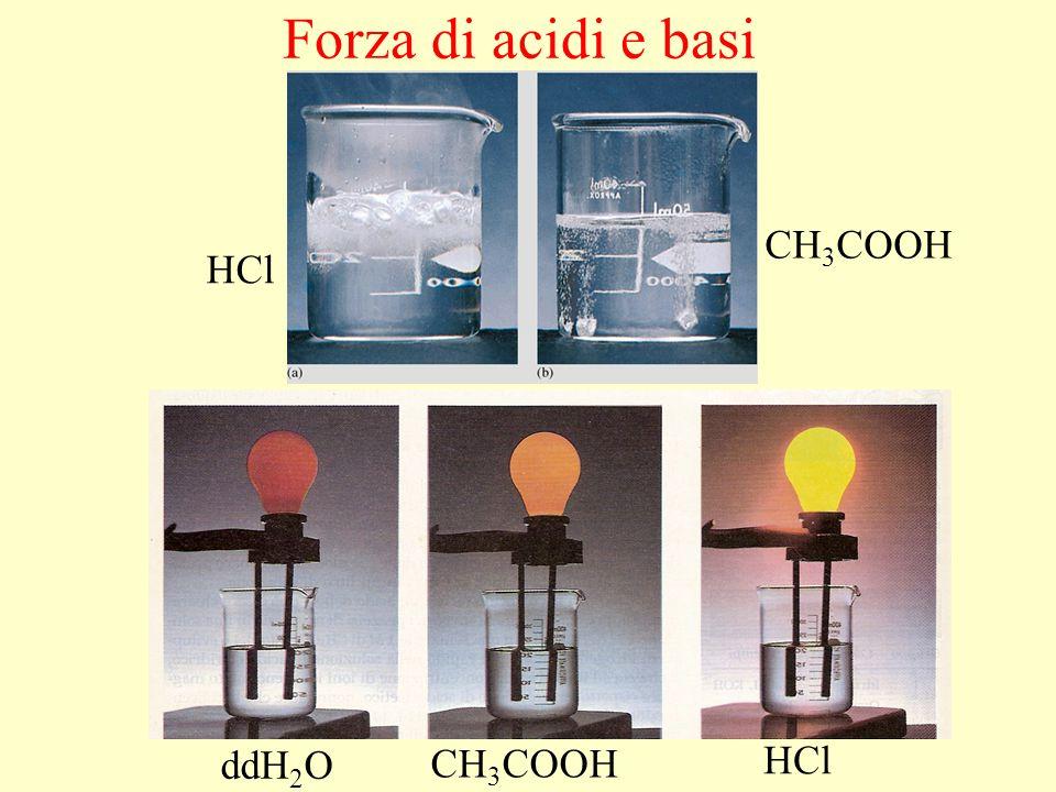 Forza di acidi e basi CH3COOH HCl Mg ddH2O CH3COOH HCl