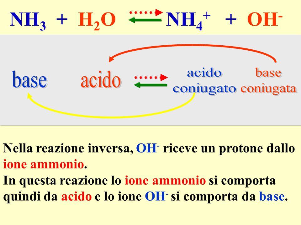 NH3 + H2O NH4+ + OH- Nella reazione inversa, OH- riceve un protone dallo. ione ammonio.