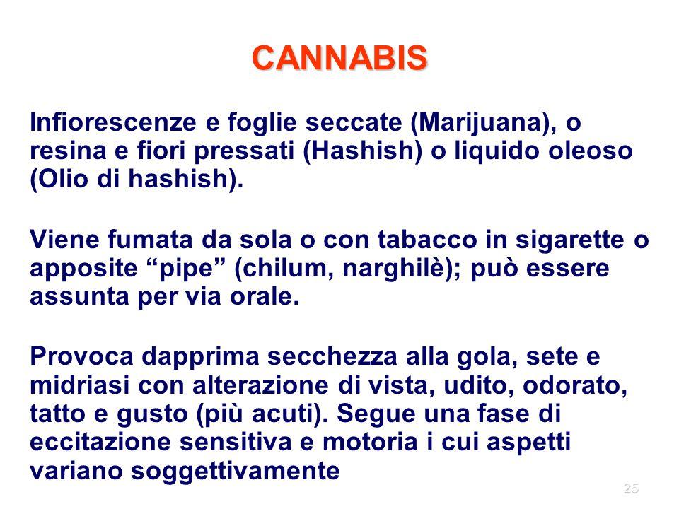 CANNABIS Infiorescenze e foglie seccate (Marijuana), o resina e fiori pressati (Hashish) o liquido oleoso (Olio di hashish).