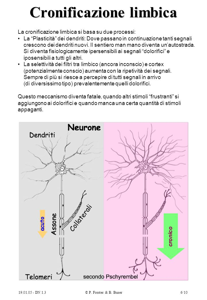 Cronificazione limbica