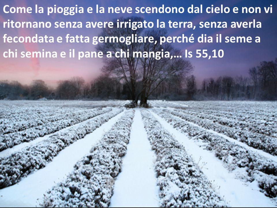 Come la pioggia e la neve scendono dal cielo e non vi ritornano senza avere irrigato la terra, senza averla fecondata e fatta germogliare, perché dia il seme a chi semina e il pane a chi mangia,… Is 55,10
