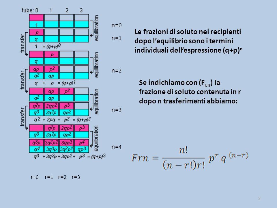 n=0 n=1. Le frazioni di soluto nei recipienti dopo l'equilibrio sono i termini individuali dell'espressione (q+p)n.
