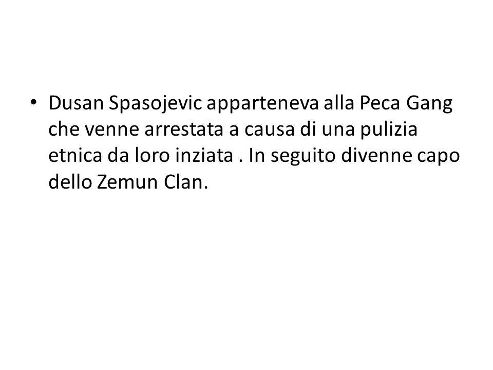 Dusan Spasojevic apparteneva alla Peca Gang che venne arrestata a causa di una pulizia etnica da loro inziata .