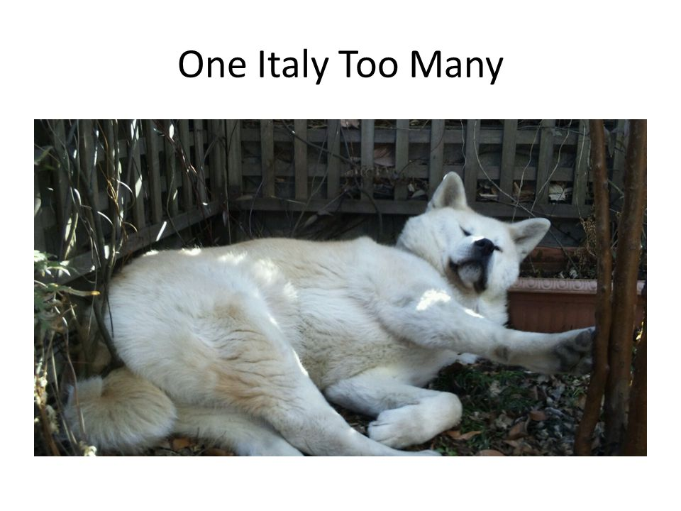 One Italy Too Many