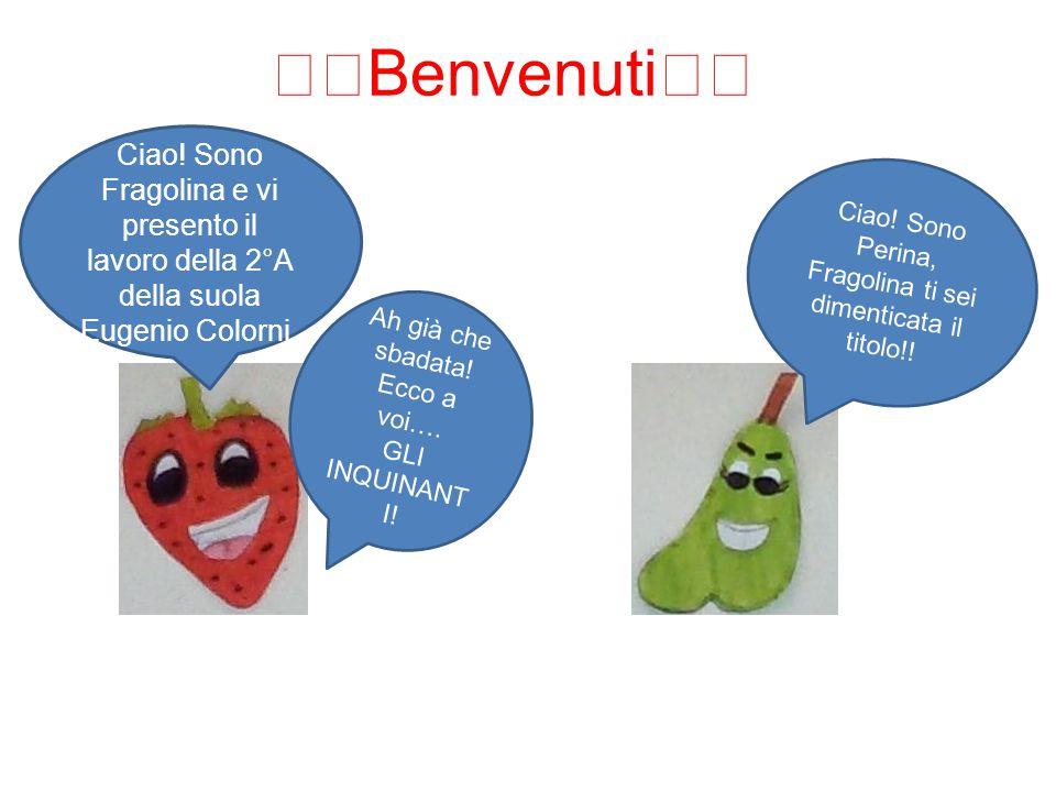 🍟Benvenuti🍟 Ciao! Sono Fragolina e vi presento il lavoro della 2°A della suola Eugenio Colorni.