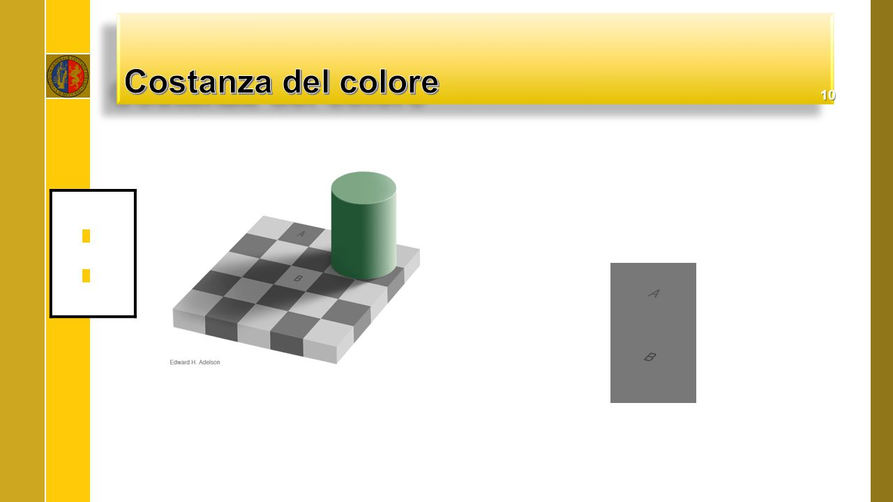 Costanza del colore http://web.mit.edu/persci/people/adelson/checkershadow_downloads.html.