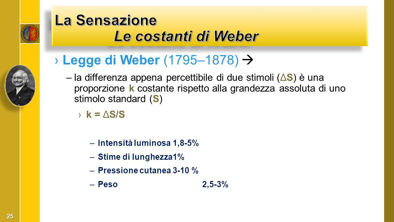 La Sensazione Le costanti di Weber