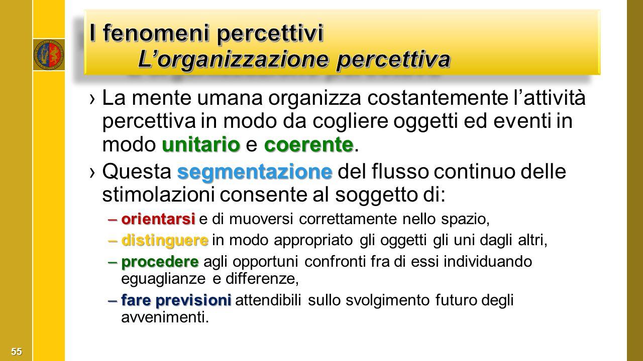 I fenomeni percettivi L'organizzazione percettiva