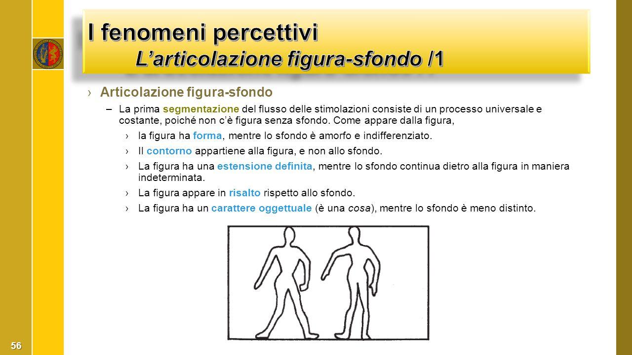 I fenomeni percettivi L'articolazione figura-sfondo /1