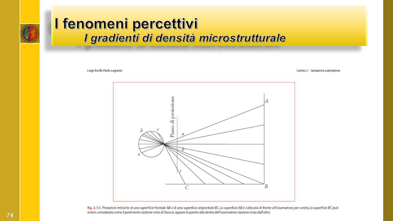 I fenomeni percettivi I gradienti di densità microstrutturale