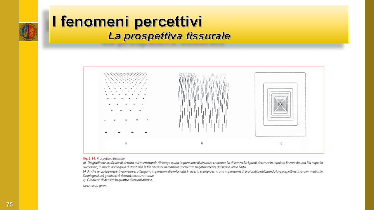 I fenomeni percettivi La prospettiva tissurale