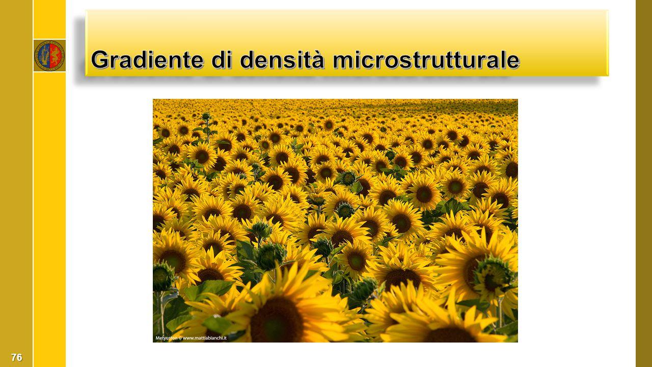 Gradiente di densità microstrutturale