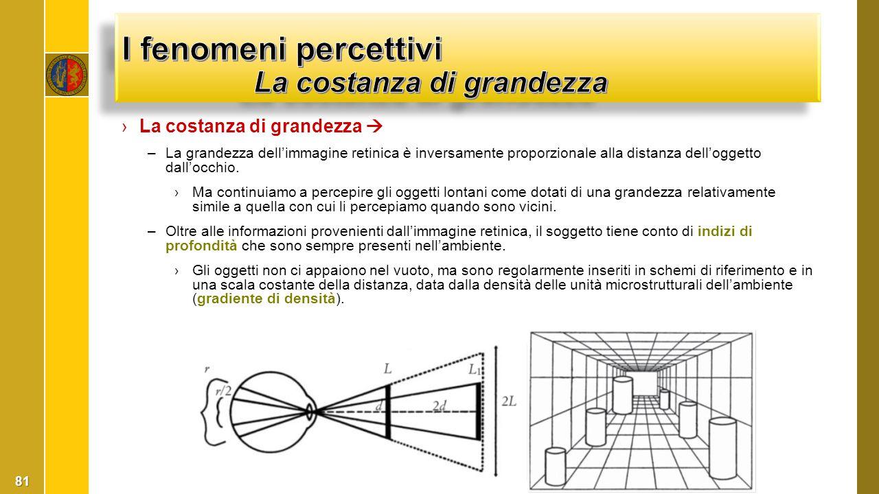 I fenomeni percettivi La costanza di grandezza