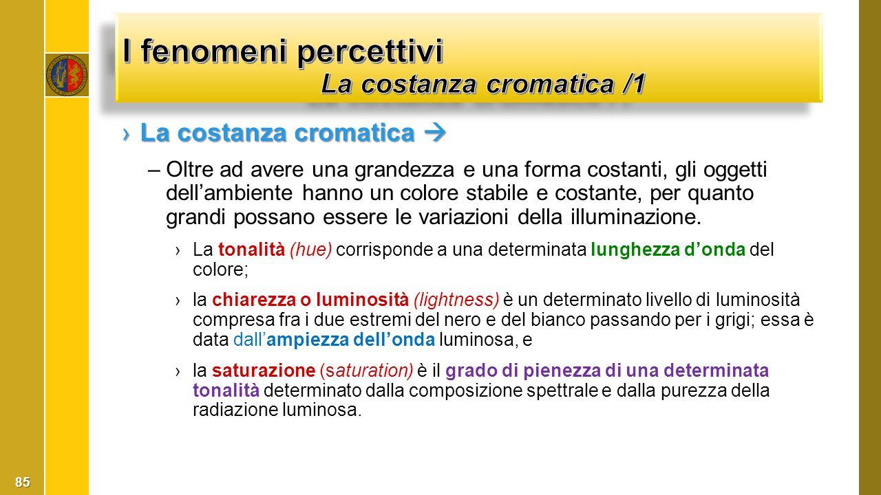 I fenomeni percettivi La costanza cromatica /1
