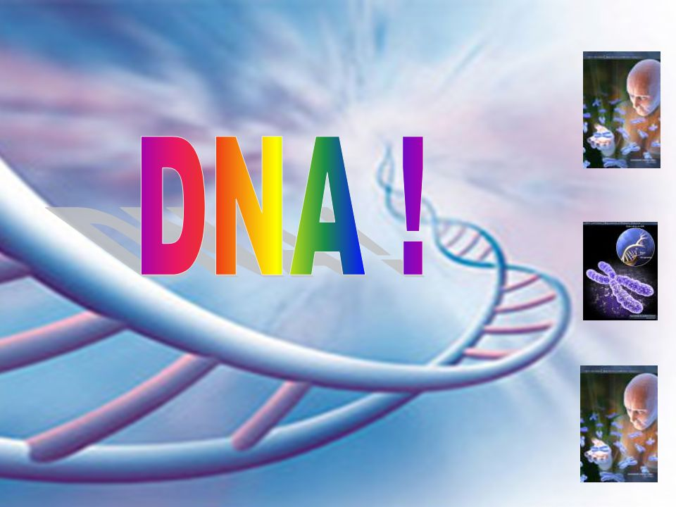 DNA !