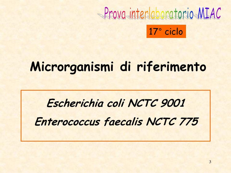 Microrganismi di riferimento Enterococcus faecalis NCTC 775