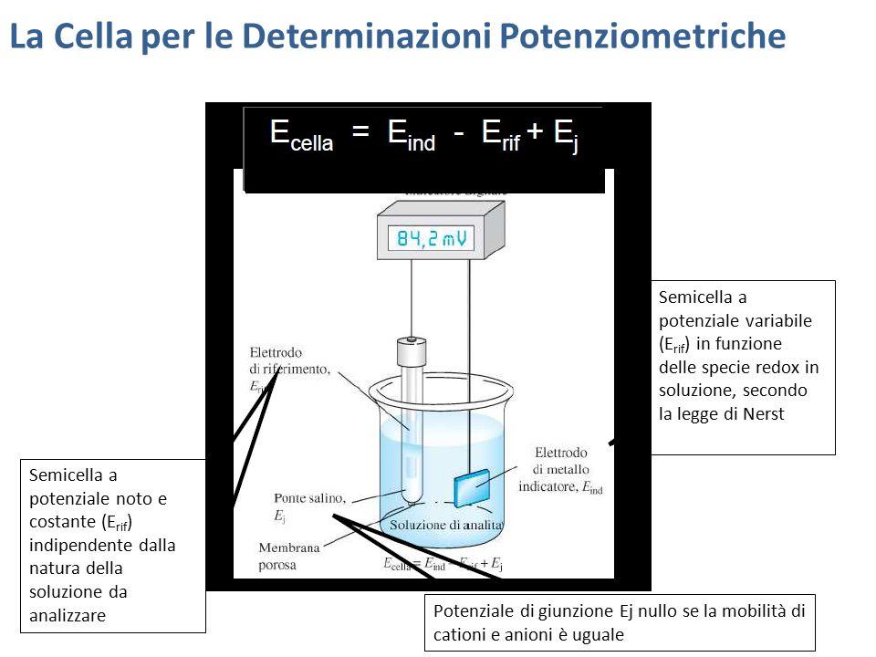 La Cella per le Determinazioni Potenziometriche