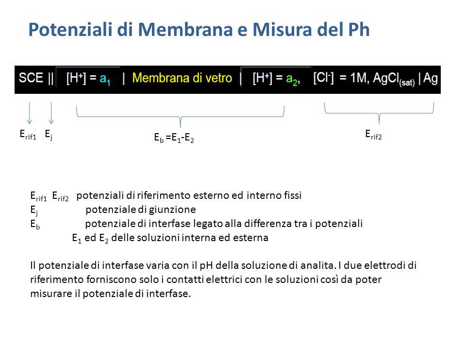 Potenziali di Membrana e Misura del Ph