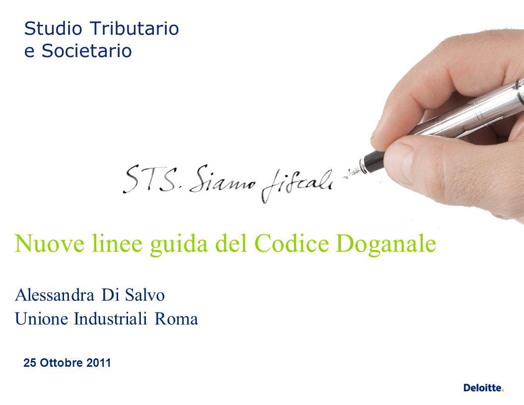 Nuove linee guida del Codice Doganale