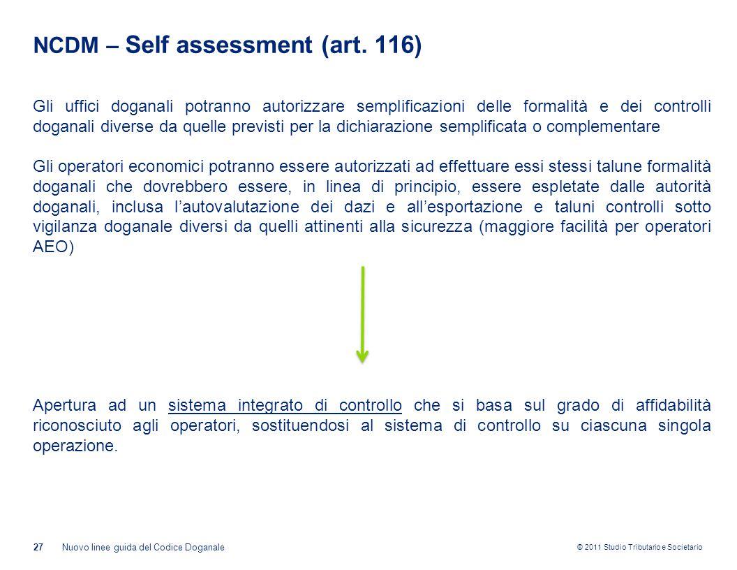 NCDM – Self assessment (art. 116)